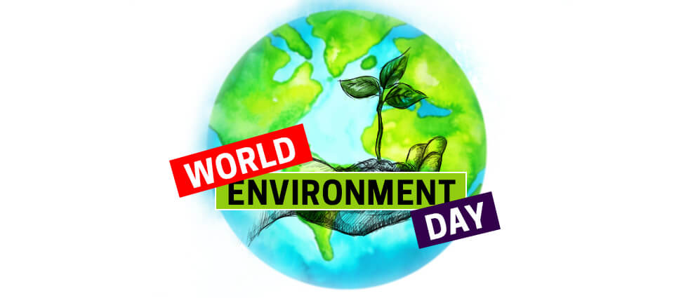 World Environment Day | Amewoo